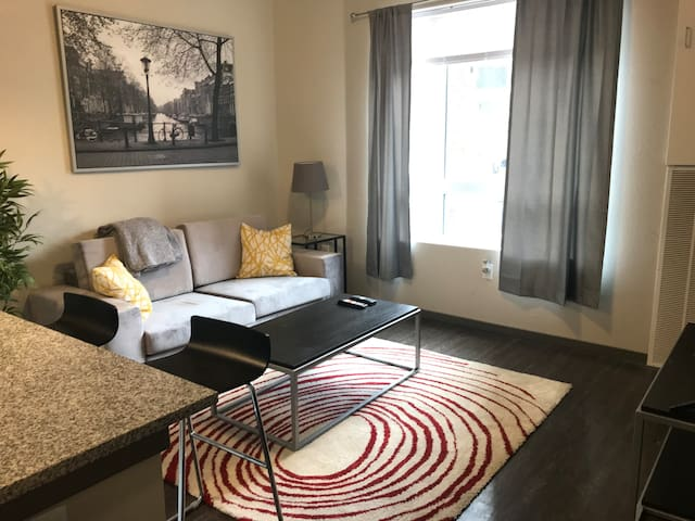 1 Bed Near the Mississippi River and UMN