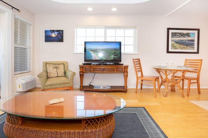Living Room has air conditioner and ceiling fan, sofa with pull-out sleeper bed, coffee table, chair, TV with DVD player.
