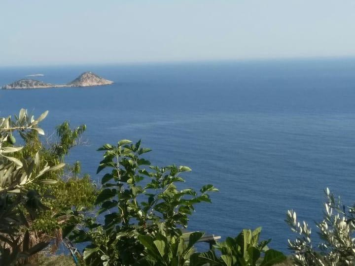 Deniz manzarali  Balayı Suiti