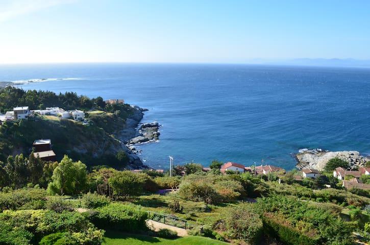 La mejor vista de Papudo