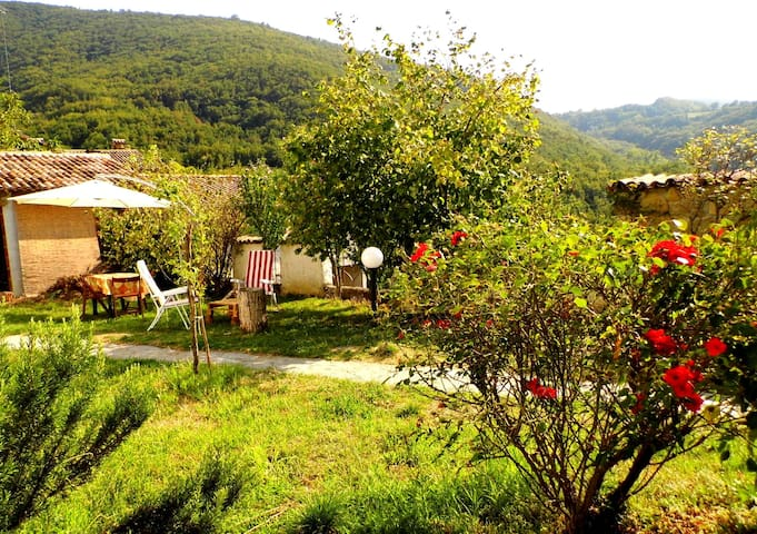 Deep in the wild nature - Sevizzano - Casa