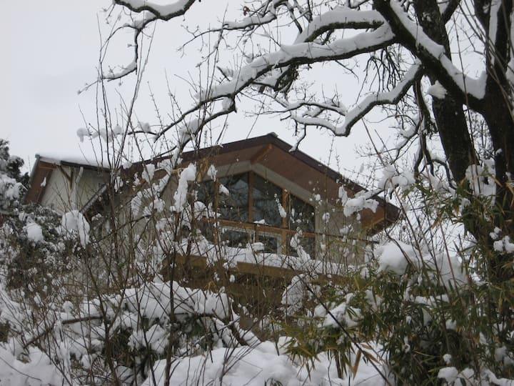 Historic Mt. Sequoyah Ozark Retreat on Dickson St.