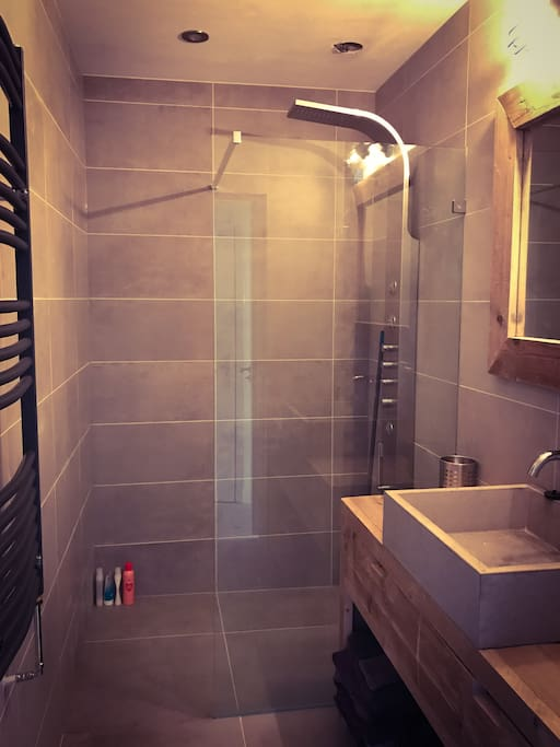 The bathroom is very modern and has a big shower