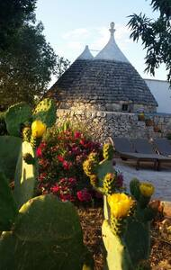 your private trulli near the beach - Ostuni