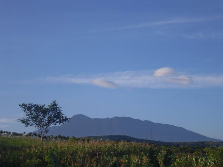 The view of Mount Gede