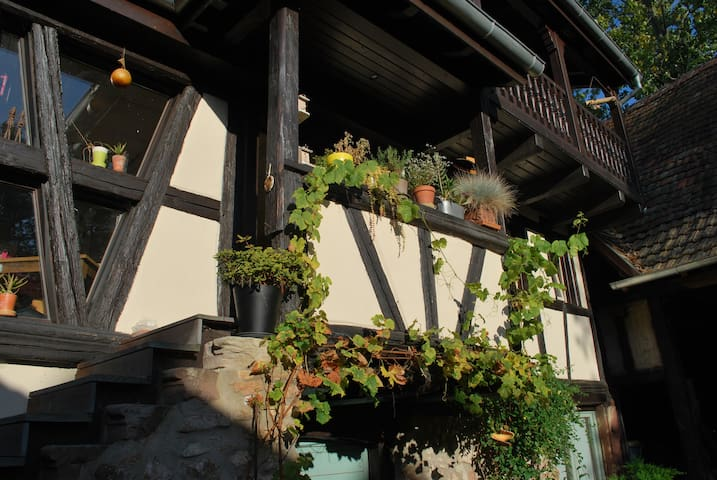 Le lodge - Bourgheim - Bed & Breakfast