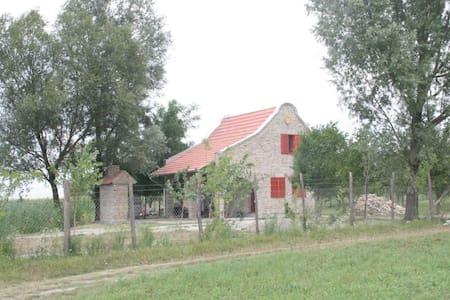 House in nature near Novi Sad - Novi Sad