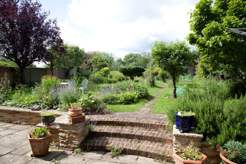 A view of our garden from the kitchen.