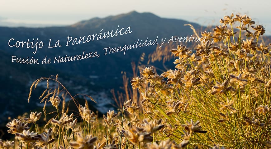 Casa de campo La PanoramiKa - Otívar - Casa