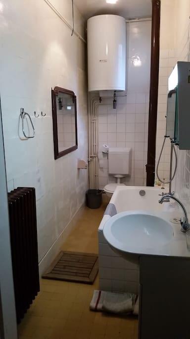 Salle de bain : lavabo baignoire/douche avec chauffe eau indépendant et W.C., radiateur, 2 miroirs et fenêtre haute sur le jardin.