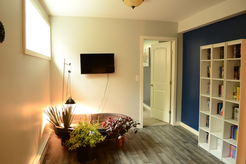 Pet Friendly Apartments For Rent Steinbach