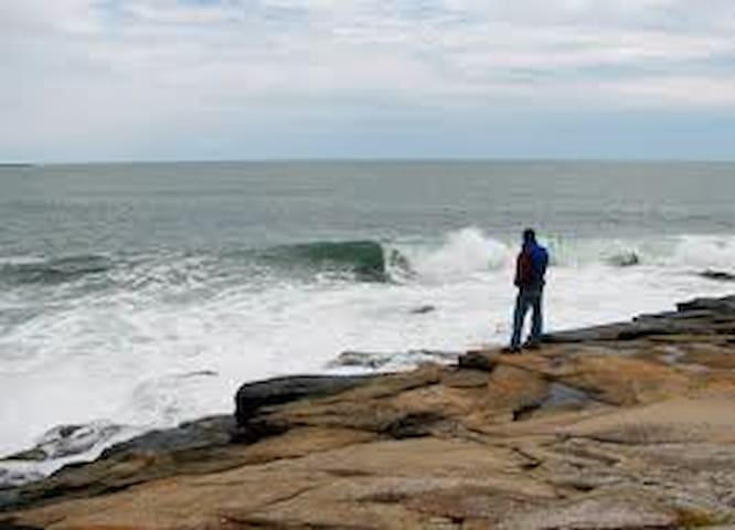 Acadia National Park & Schoodic