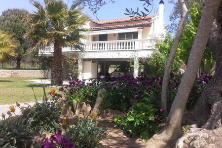 Villa Lyra.