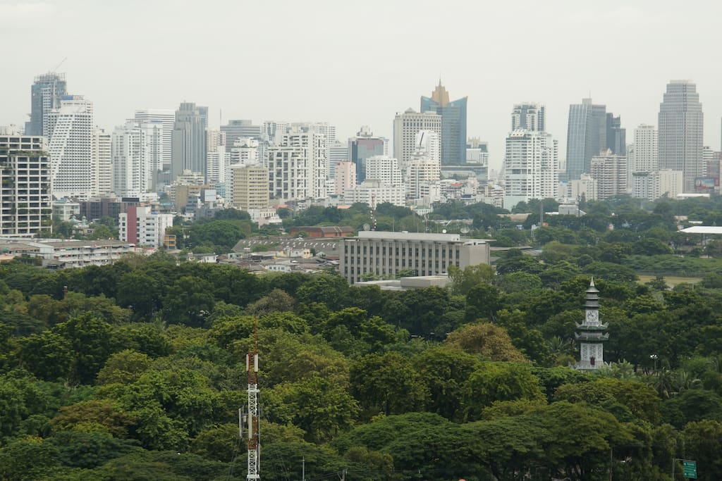 Superbe view of Lumpini Park, a jogging to start the day