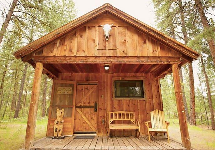 Owl's Nest Studio Cabin - Winthrop - Hytte