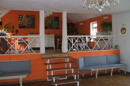 seminar house 1788, yoga & ballroom - Bechtolsheim - Overig
