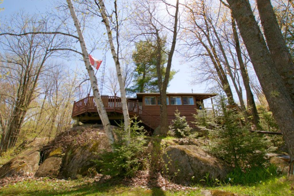 Spacious open concept cottage with two bedrooms and a Bunkie