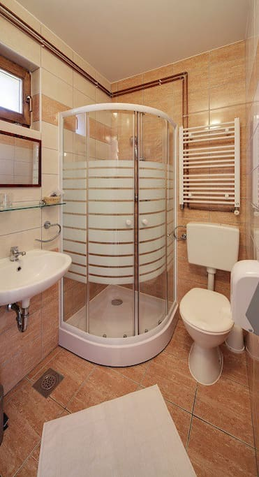 Bathroom with shower and hairdryer