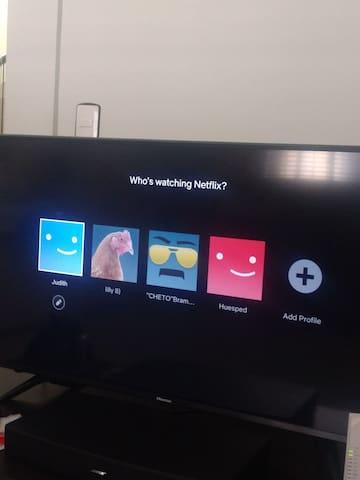 Televisión con Netflix! Contamos con WiFi
