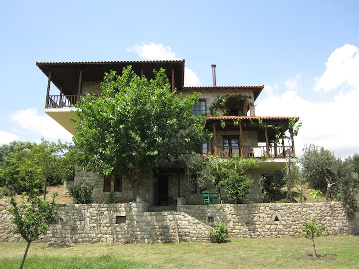 Ground floor apartment with mount Athos view