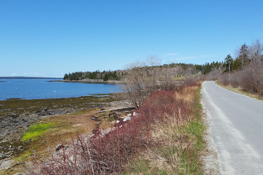 Cape Road, Seal Cove, ME