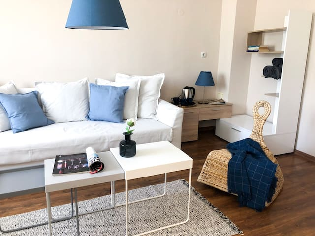 Cozy and Charming studio in Downtown!