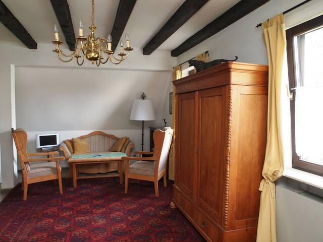 Haus von Rosenthal, ruhig, komfort. - Bad Homburg - Apartment