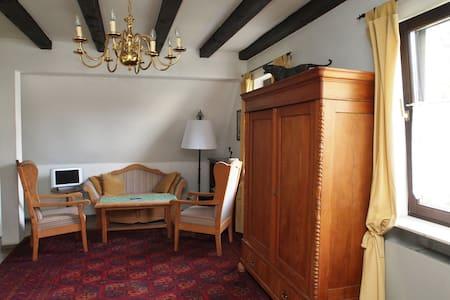 Haus von Rosenthal, ruhig, komfort. - Bad Homburg - Apartmen