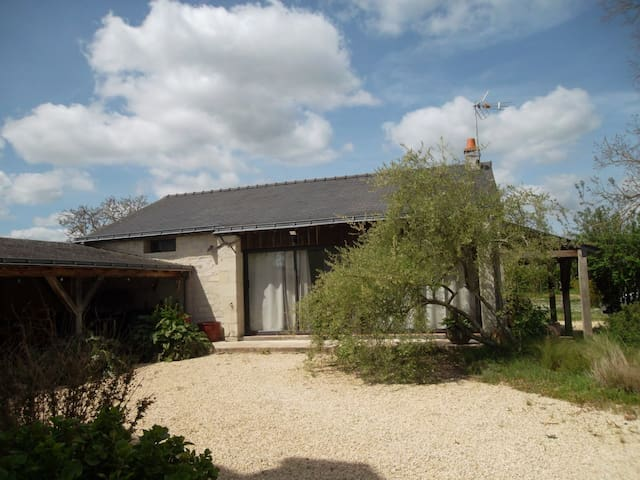 Outhouse with big garden and covered swimming pool - Varennes-sur-Loire - House