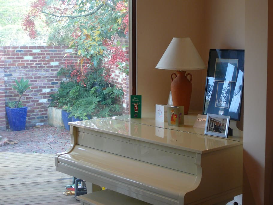Ivory with ivories