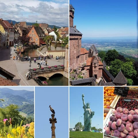 Colmar and surroundings, to see and to do !
