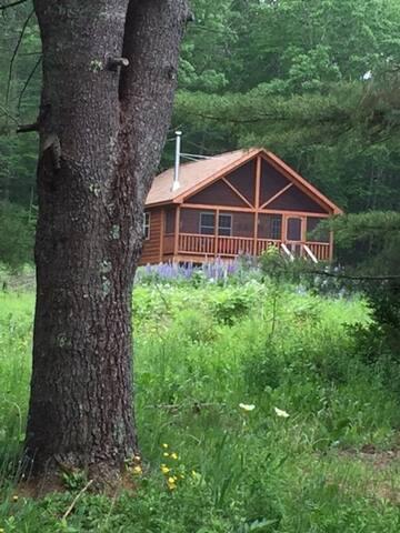 Cozy cabin in quiet woods near lake in Ellsworth.