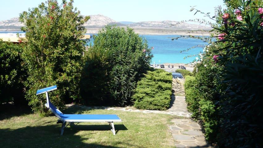"Private villa with garden facing the ""Pelosa Beach"