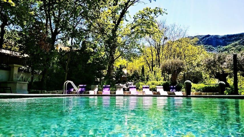 Mas d'exception Piscine-SPA-Sauna - Sisteron - House