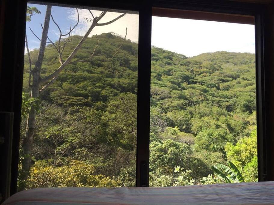 Vista a la naturaleza desde la cama principal.