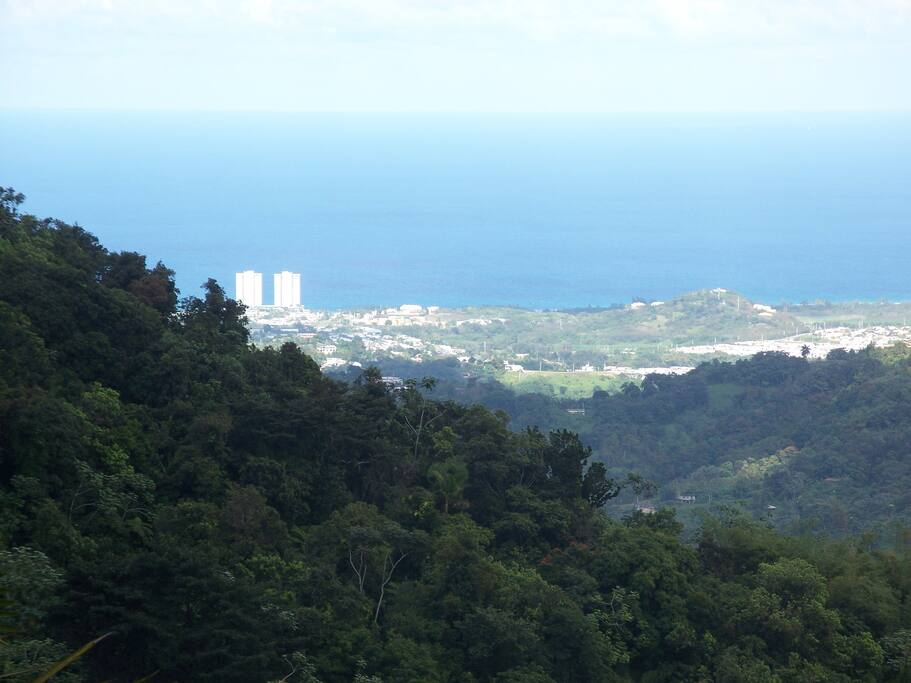 View of Luquillo from El Yunque Rain Forest National Park.