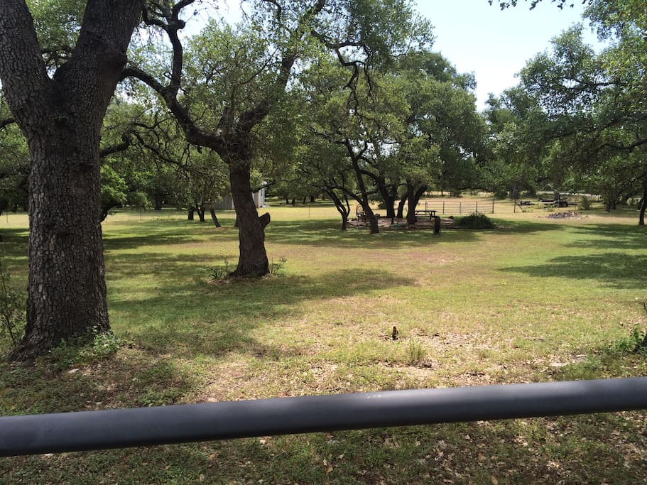 Picnic area at back of property