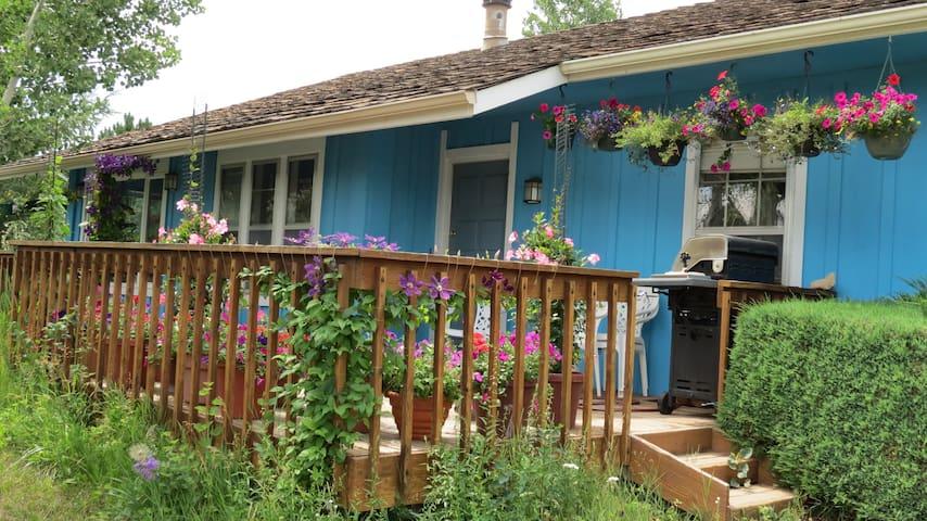 Evergreen mountain home near Denver