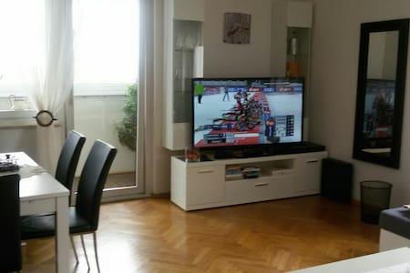 3  Zimmer  Wohnung. Blick auf Linz. - Linz
