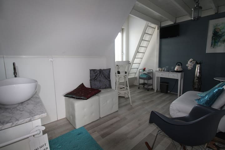 Cosy 1-3 persons room in centre - Zwolle