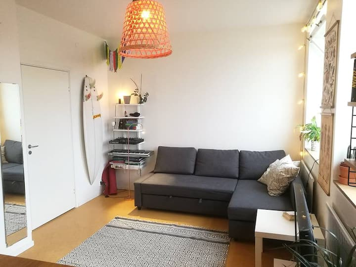 Studio Aparment in Telefonplan, 15 min from city