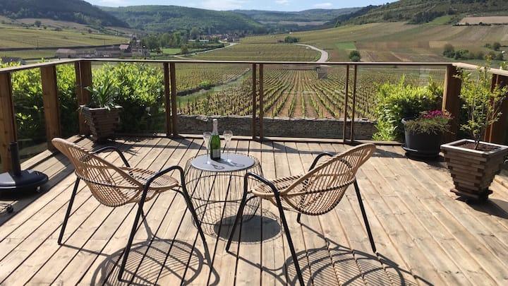 Villa with Outstanding Vineyard View, Deck, Garden