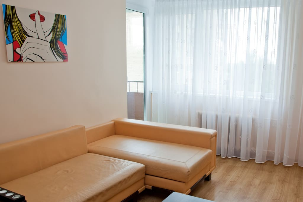 Stylish apartment in Kaunas