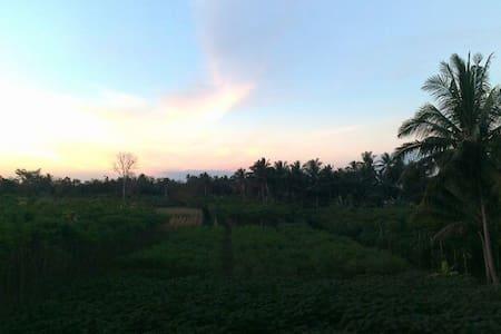 Jolan jalan homestay Borobudur home - Borobudur