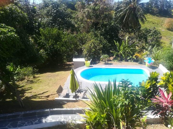 Endroit chaleureux avec piscine et détente