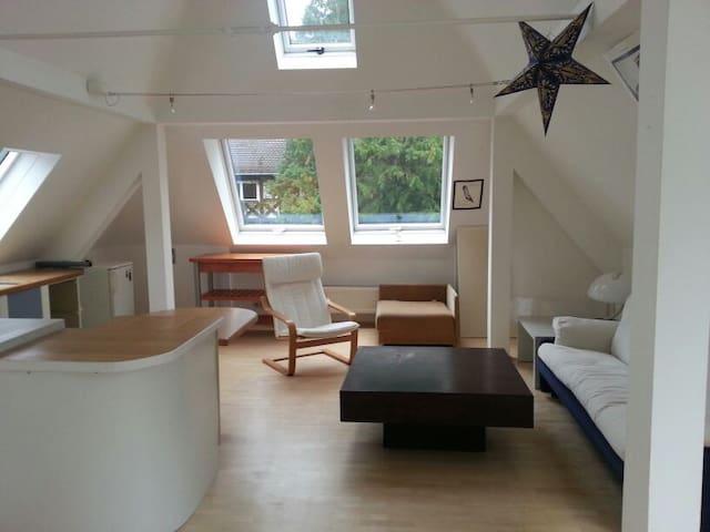 Komplett eingerichtete DG - Wohnung - Mnichov - Dům
