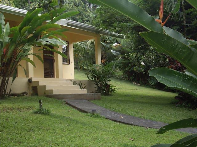 Mira Olas Pavones Jungle Cabina 2