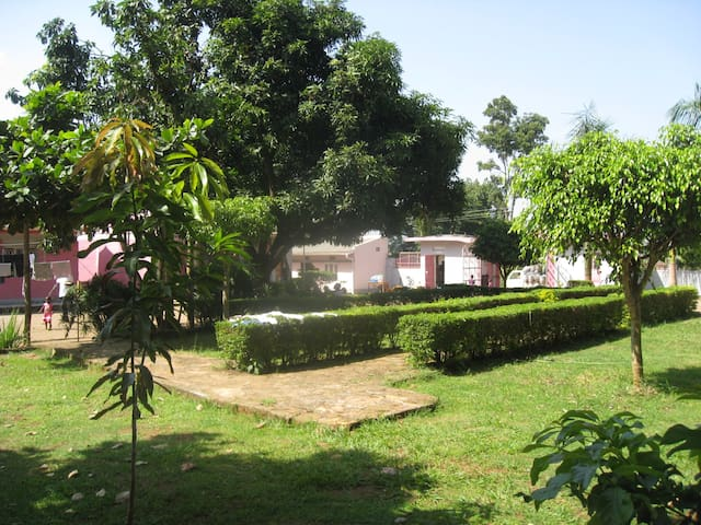 spacious beautiful gardens and trees with lots of lots of flowers