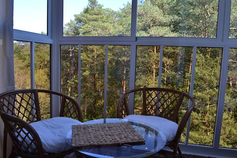 Apartment with a great view of pine trees