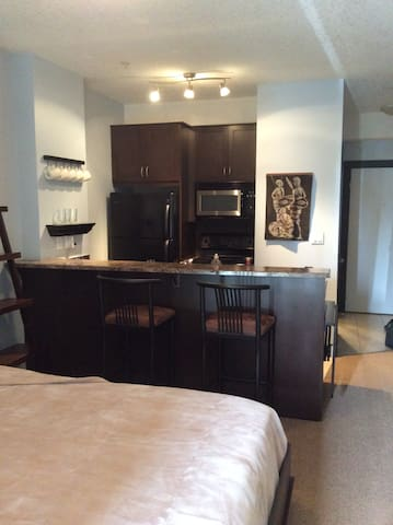 Siliver Rock Condo, studio, sleeps 2